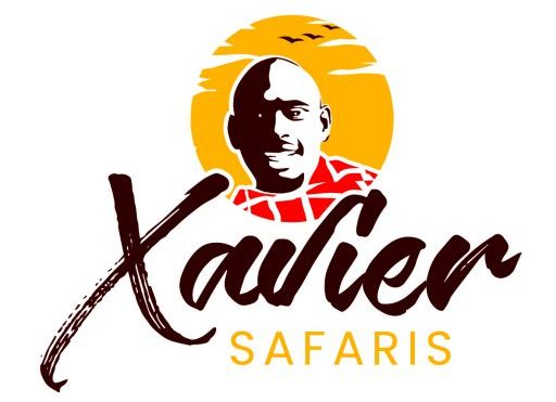 Xavier Safaris